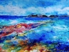 Playa Canoa