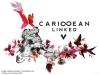 1. Caribbean Linked V Flyer